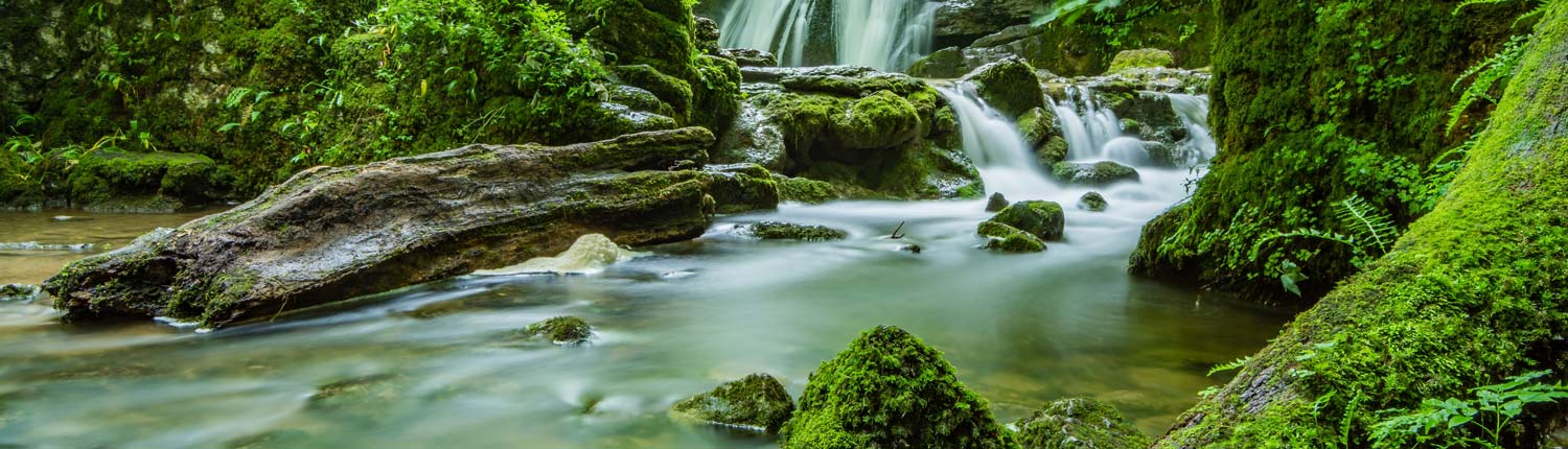 Water rushes over mossy green rocks